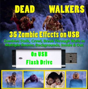DEAD WALKERS VERSION #2